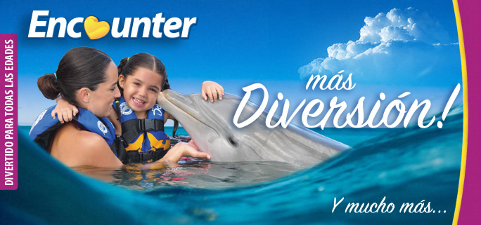 Six Flags Mexico Dolphin Encounter Program