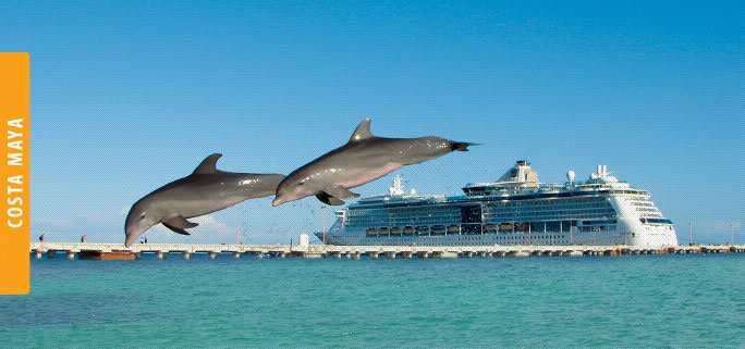 Dolphin Discovery Costa Maya Location