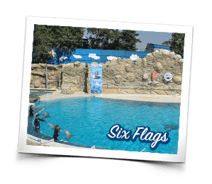 Six Flags Locaci�n