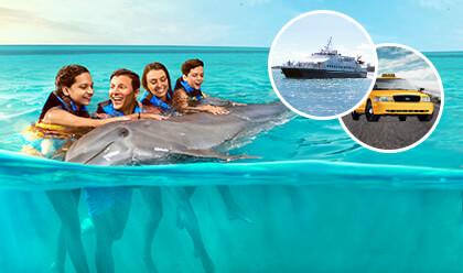 Dolphin Encounter + Ferry + Traslado