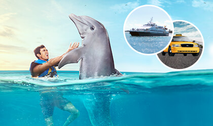 Dolphin Swim Adventure + Ferry + Traslado