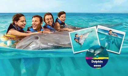 Dolphin Encounter Memories