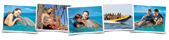 Programa nado delfines Dolphin Encounter All Inclusive