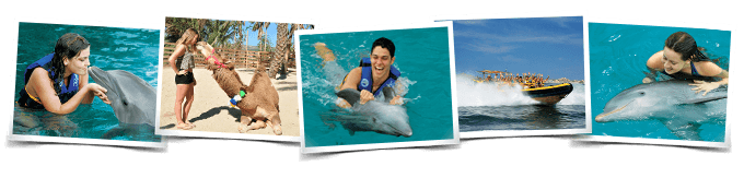 Programa nado delfines Swim and Ride All Inclusive