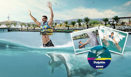 Dolphin Royal Swim Plus Memories