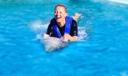 Dolphin Swim Adventure