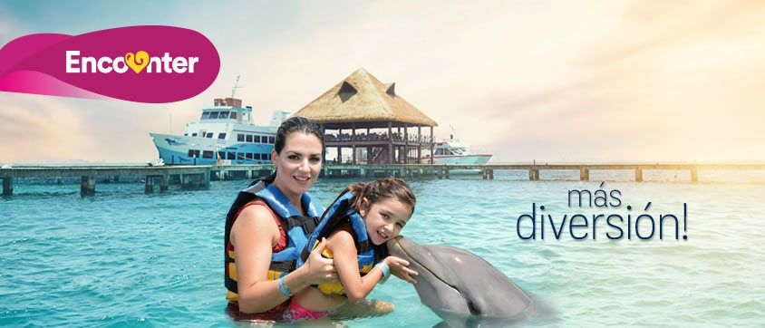 encuentro con delfines isla mujeres