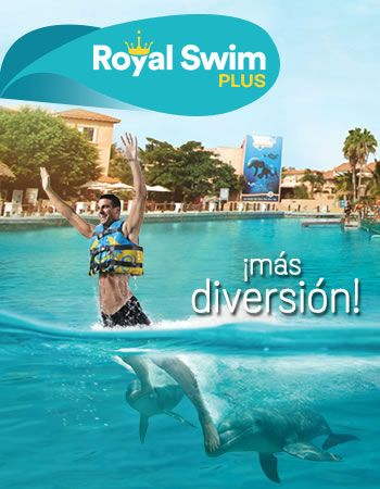 Royal Swim